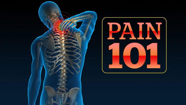 pain101